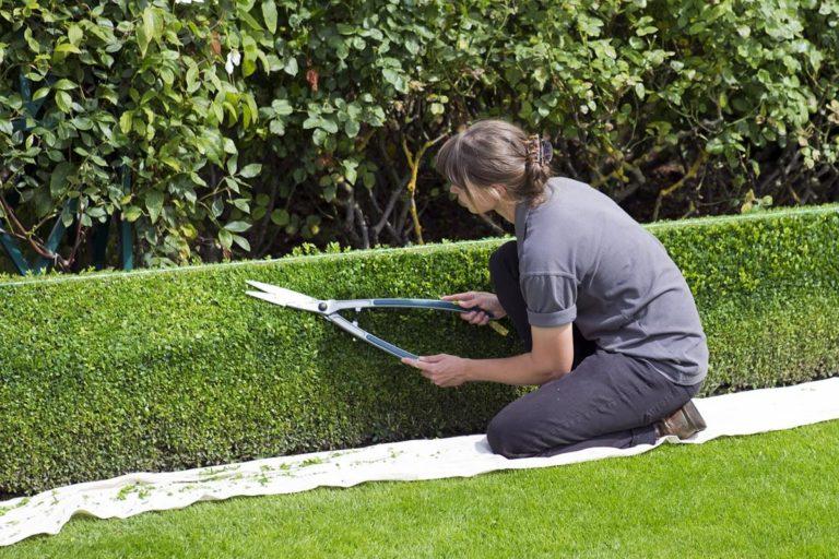 Nawadnianie ogrodów z wykorzystaniem nowoczesnych metod